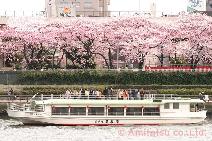 東京の屋形船あみ達さん