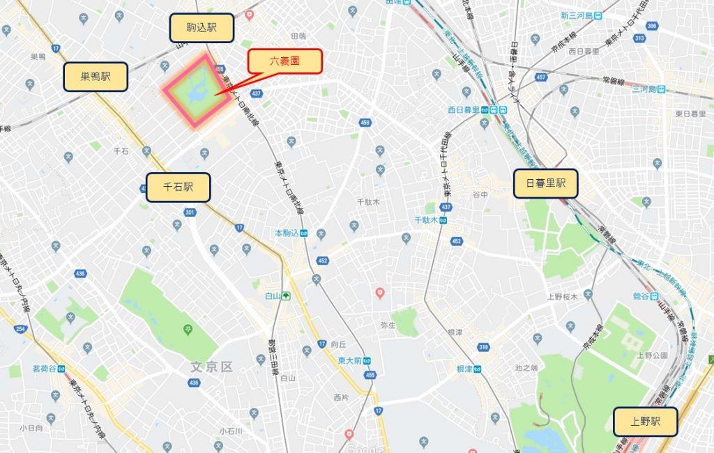 東京の六義園のお花見スポット